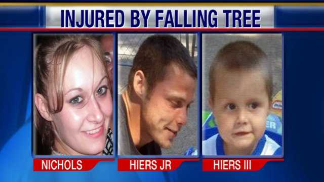 Family hurt falling tree