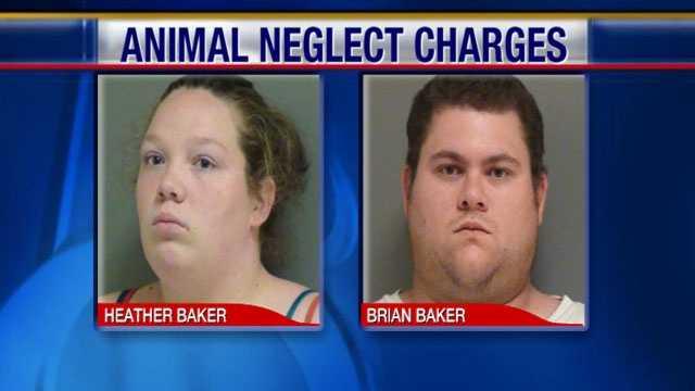 Baker animal neglect