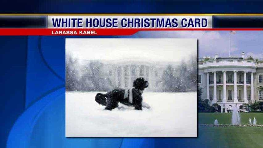 WH Card
