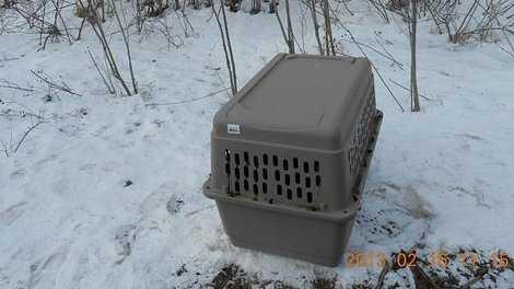 KCRG Dog Crate