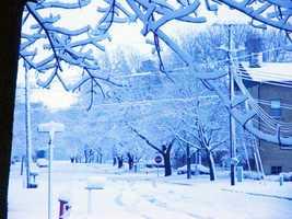 Snow in Bancroft, Iowa, on April 10.