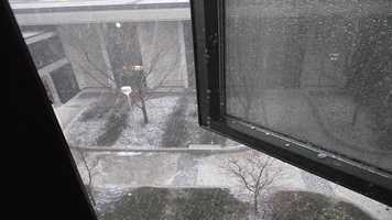 Quarter-sized hail falling at UNI in Cedar Falls.