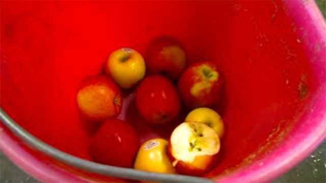 Apple generic in bucket
