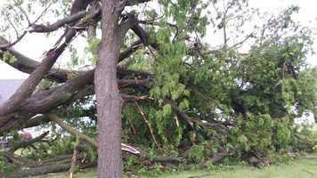 Randy and Virginia Jensen's photos of damage near Exira in western Iowa.