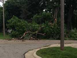 Trees down in Bayard.