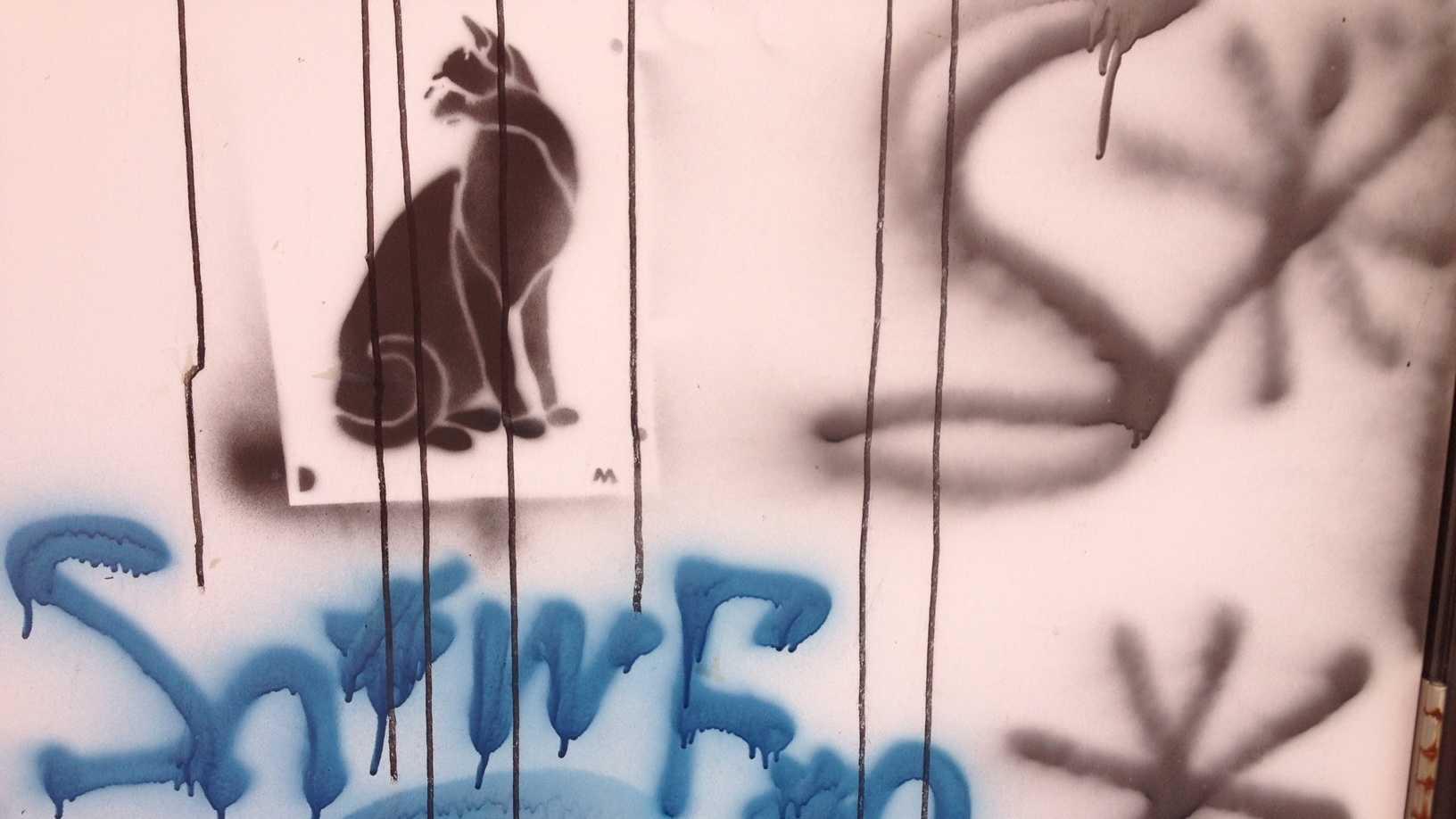 Ames grafitti