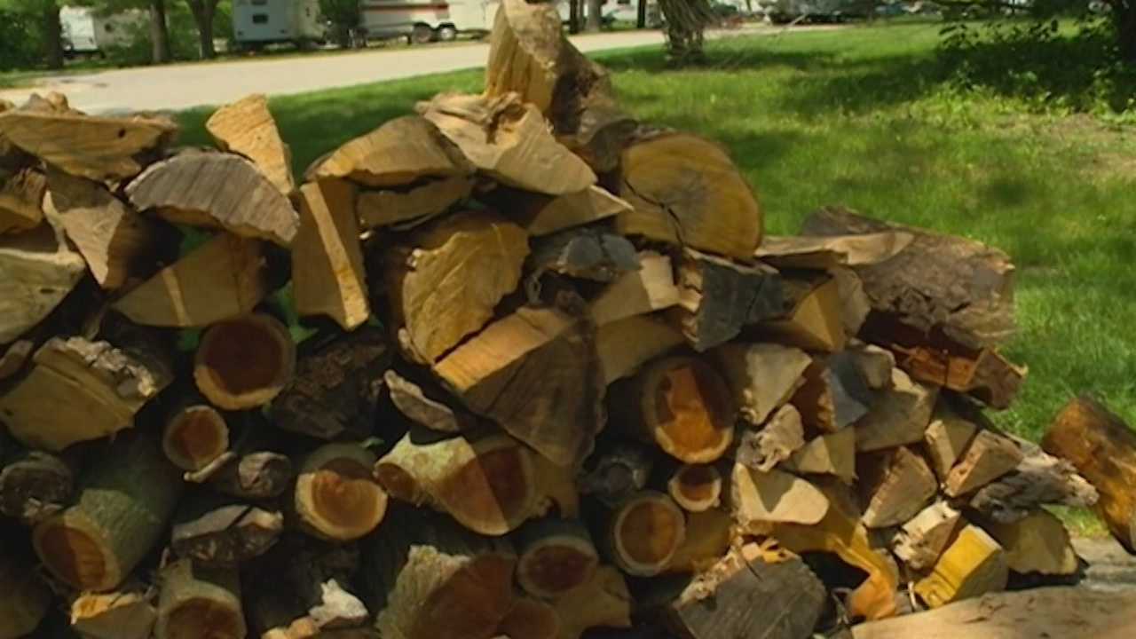 This camping season you can help prevent the spread of the bug that's killing Iowa's trees.