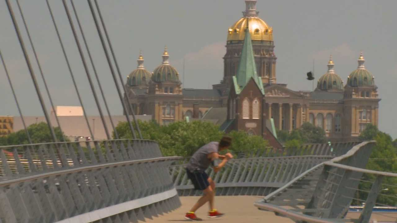 Dive-bombing bird targets downtown walkers, runners