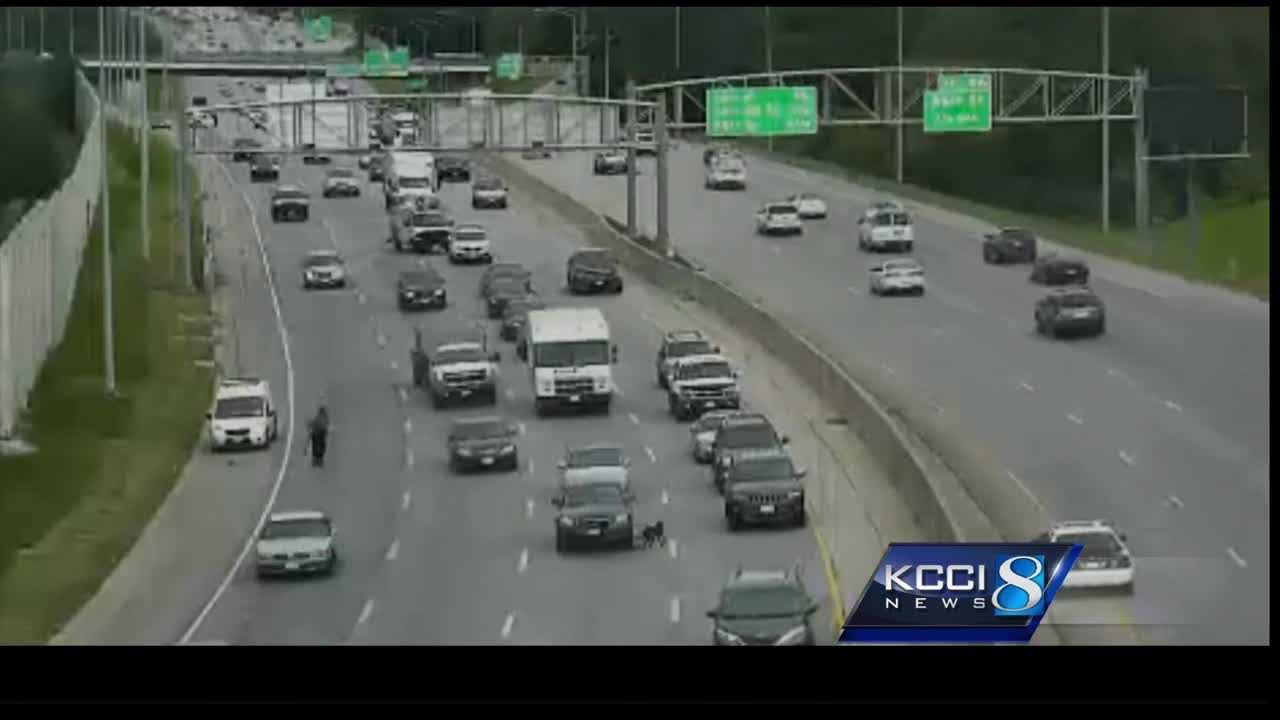 Des Moines police received several 911 calls Wednesday morning, when a dog was spotted running on I-235.