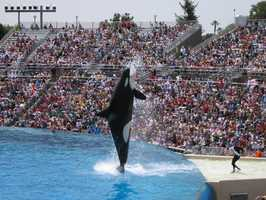 Sea World - San Diego, CAAt the Gate ADULT $73.00&#x3B; CHILD $65.00 (+ tax)Online: ADULT $53.00&#x3B; CHILD $53.00  (+ tax)*Discounts for residents of Southern California