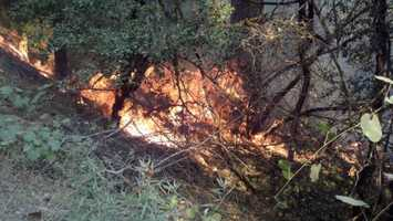6:50 p.m. FridayRobbers Fire grows to 1,300 acres and is 10 percent contained.