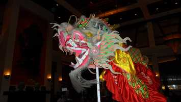 The dragon dancers make their way through the Red Lantern.