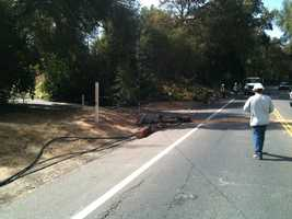 The driver was traveling on Winding Way near Walnut Avenue at the time of the crash.