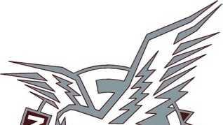 Natomas Nighthawks logo.JPG