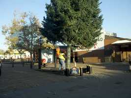 Crews escorted the tree from Mount Shasta to its new home on Front and K streets. (Nov. 8, 2012)
