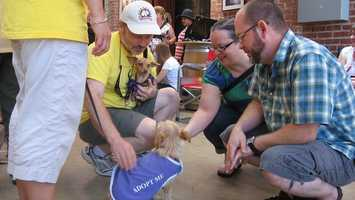 What: Happy Tails Pups & PinotWhere: Old Sugar MillWhen: Sat 1pm-4pmClick here for more information on this event.