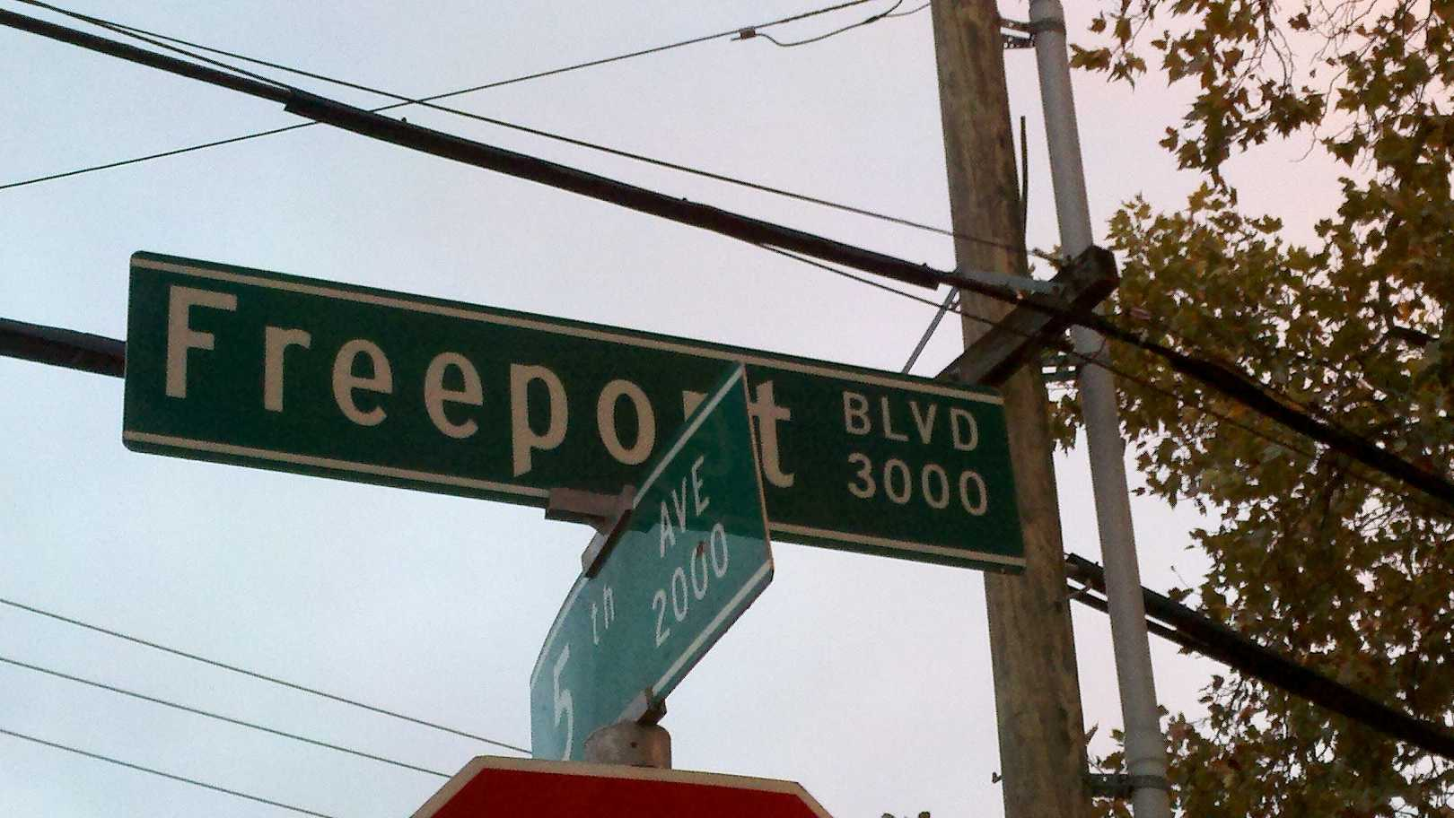 The Sacramento City Council will consider changes to a stretch of Freeport Boulevard.