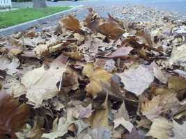 TuesdaySacramento City crews urge residents to clean their storm drains in preparation for the week's big storm.