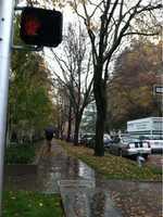 WednesdayA man braves the rain in downtown Sacramento