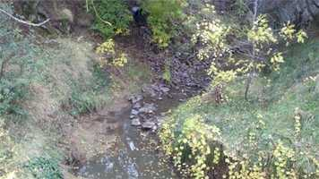 Neighbor says city works year-round to remove fallen trees and branches from Alamo Creek in Vacaville.