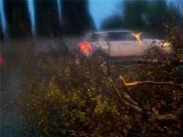 SundayRain and heavy winds pummeled Northern California on Sunday. (Dec. 2, 2012)