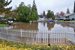 SundayRain flooded this area at Shaver Court in Old Foothill Farms.