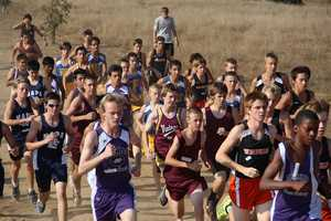 Many cross country runners, including those from Armijo, Vintage, Vacaville, Napa and Wood, battle for position.