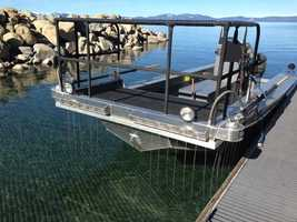 Researchers from the University of Nevada, Reno, UC Davis, and California State Fish and Game regularly survey fish using a specialized boat with electrical probes extending from it which stun temporarily stun nearby fish.