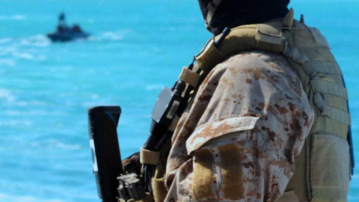 Navy SEAL 01.jpg