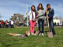 Students at Pacific Elementary plan to name each tree and promise to water and care for them.
