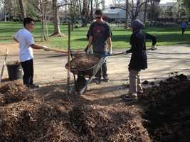 Sacramento State is cited by the Arbor Day Foundation as a Tree Campus USA.