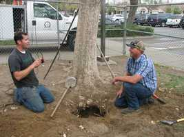 Workers dug up the 25-year-old time capsule at Alberta Martone Elementary School.