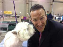 KCRA 3's Mike TeSelles poses with a pooch. See more photos from Thursday's event.