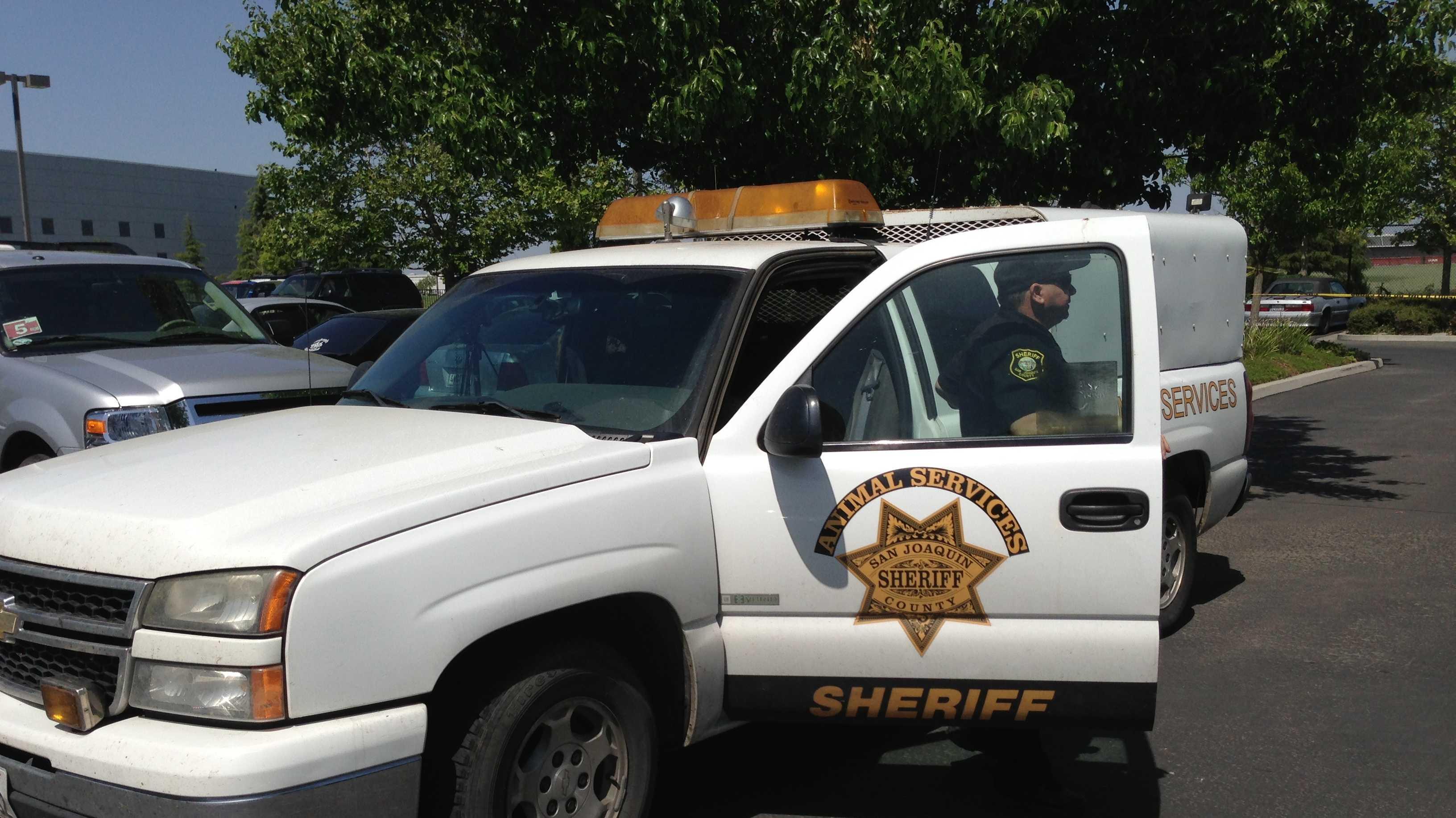 San Joaquin County Animal