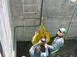 A doe jumped a fence and fell into a deep vault at a city of Roseville water treatment plant.