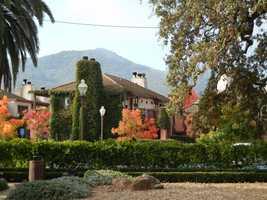 19. Dan Aykroyd, Drew Barrymore, Antonio Banderas, Joe Montana, Fergie and Arnold Palmer all own or have owned vineyards in Napa.
