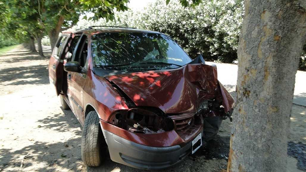 Van into tree blurb 070513.jpg