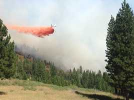 Cal Fire crews helped battle a grass fire that broke out in the El Dorado National Forest on Saturday.
