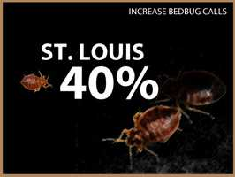 St. Louis experienced a 40 percent increase in calls.
