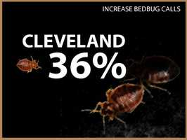 Cleveland experienced a 36 percent increase in calls.