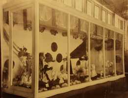 This photo shows an exhibit displaying the wares of Mrs. Fannie Sullivan, a mother of two who had a live-in business on J Street in 1895.