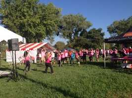 Hundreds of cancer survivors and their friends and families gather for the Making Strides Against Breast Cancer walk.