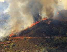 The Bridges Fire burned 46 acres near New Melones Lake.
