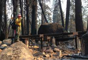 Another firefighter surveys the damage at the Tuolumne Family Camp.