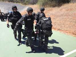 The Sacramento County Sheriff's Department also employs tactical medics from Metro Fire.  Sacramento Police have SWAT officers trained as paramedics.
