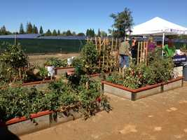 Yolo County dedicated a community garden Monday in Woodland that will be used to educate kids and adults about gardening.