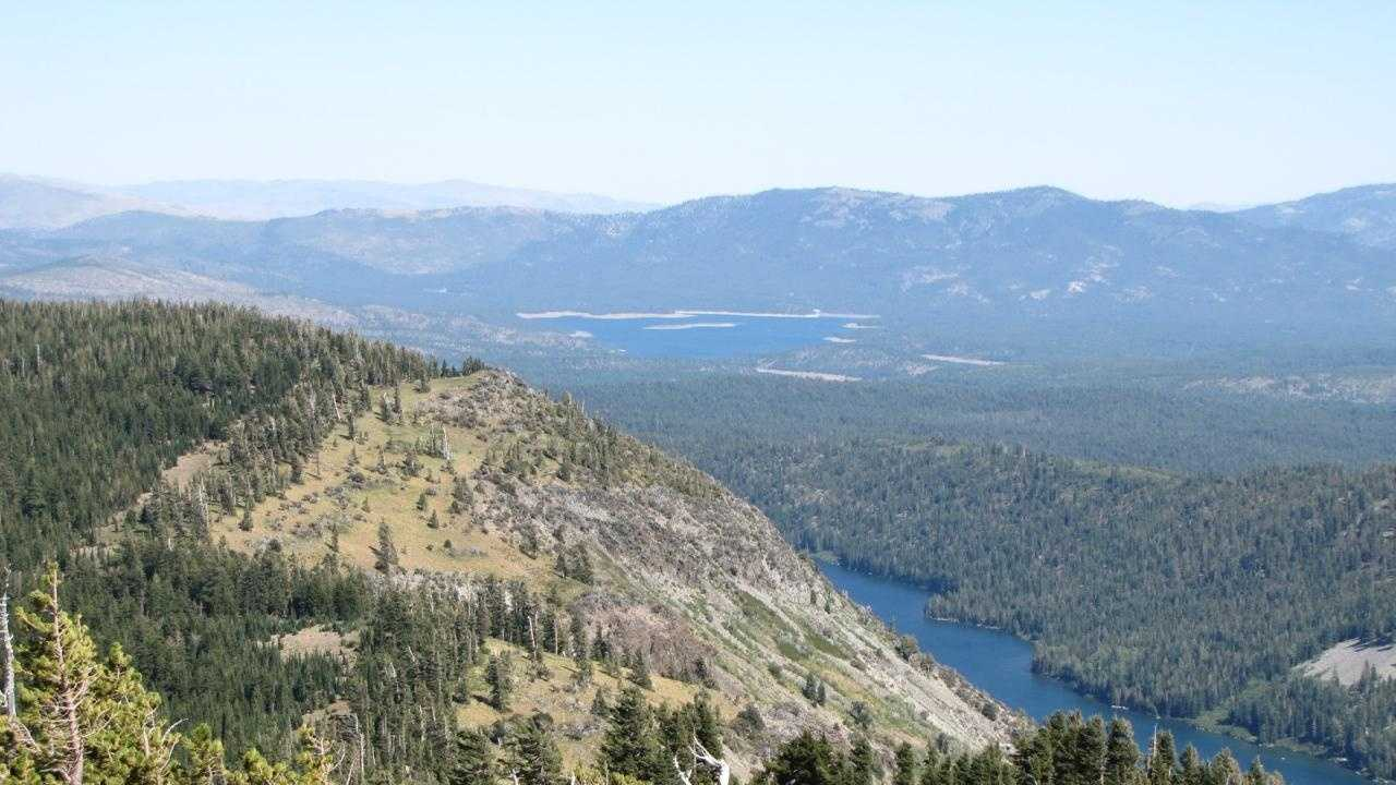 Tahoe National Forest.jpg
