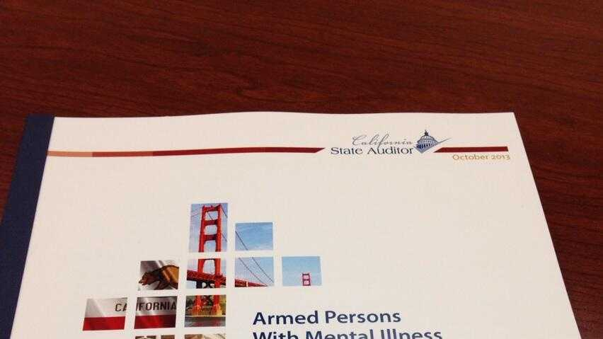 State Auditor report