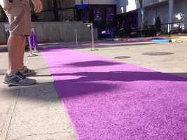 The VIP purple carpet is rolled out at Sleep Train Arena.