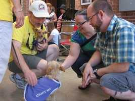 What: Pups & PinotWhere: Old Sugar MillWhen: Sun Noon-4pmClick here for more information on this event